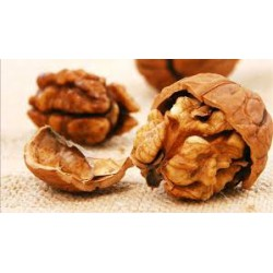 Vlašské ořechy vyloupané