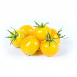 Cherry rajčata žlutá